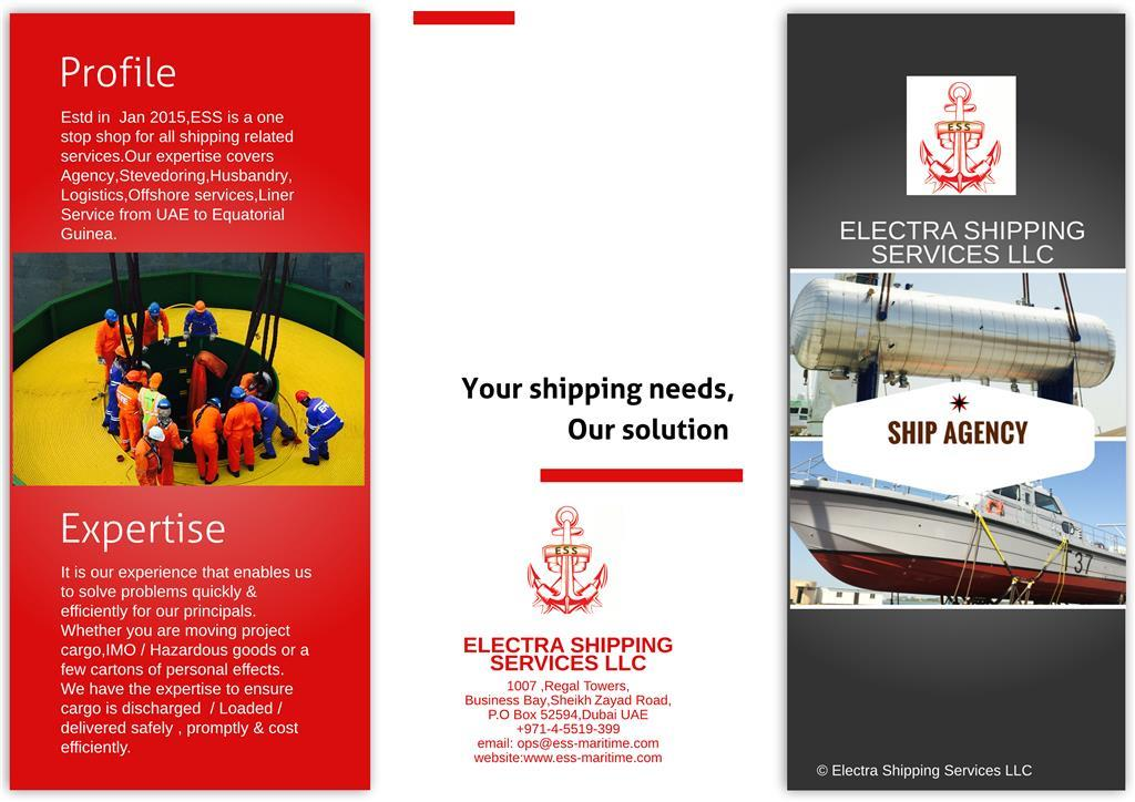 Electra Shipping Services (L.L.C.)